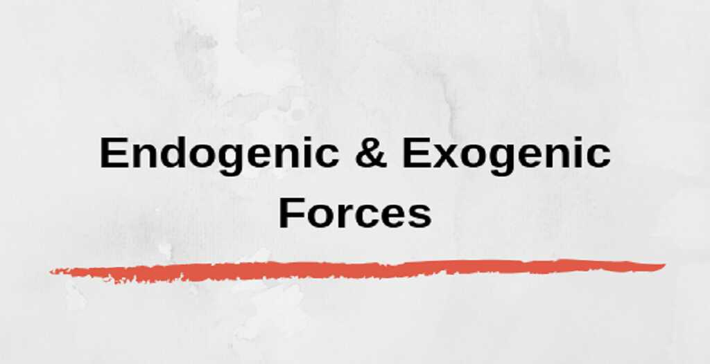 What are endogenic forces