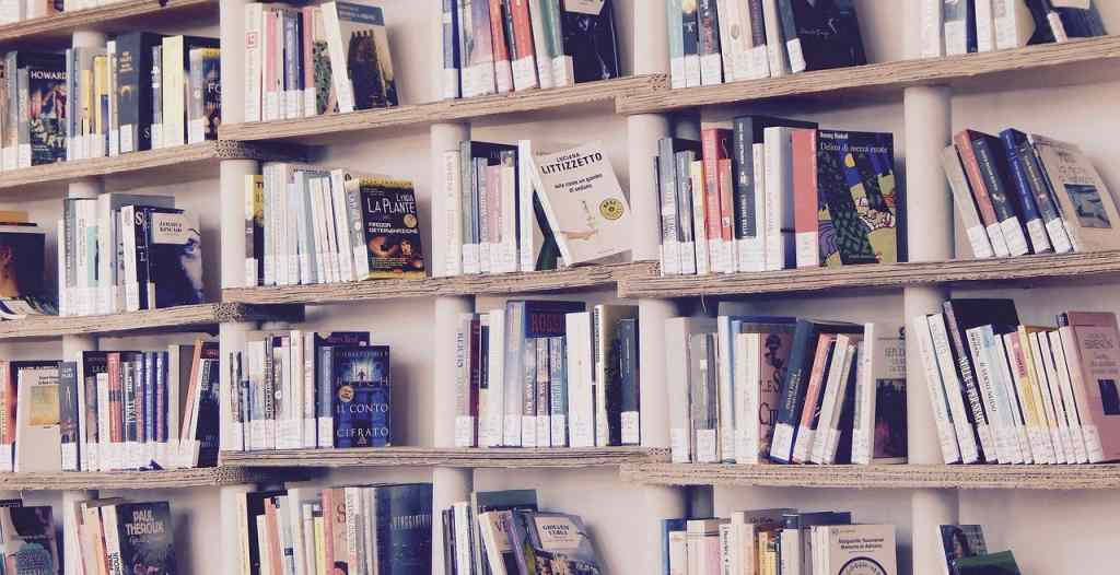 Which NCERT Books to Read for UPSC